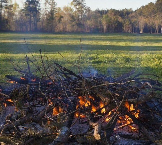 open burning brush pile in open field
